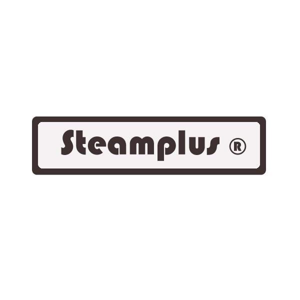 G n rateur vapeur pour hammam steamplus 6kw - Generateur vapeur hammam ...